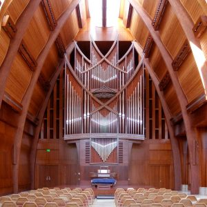 View-to-Organ